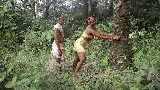 FOREST OF ROMANCE  || 2019 LATEST NOLLYWOOD MOVIES || TRENDING NOLLYWOOD MOVIES