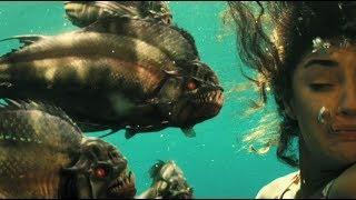 فيلم الاسماك المتوحشة للكبار فقط